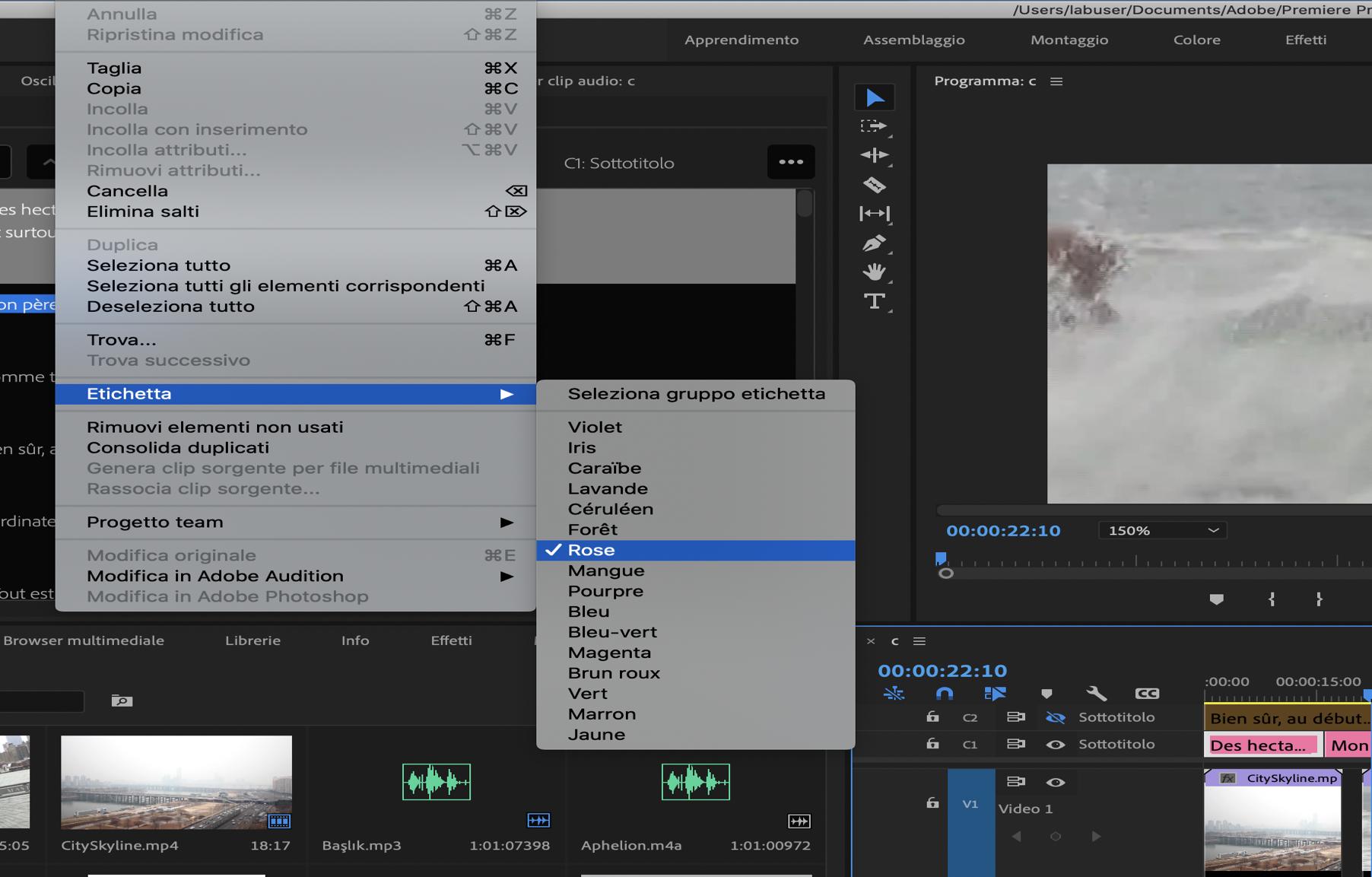 Setting label colors to caption items adobe premiere pro crack 2021
