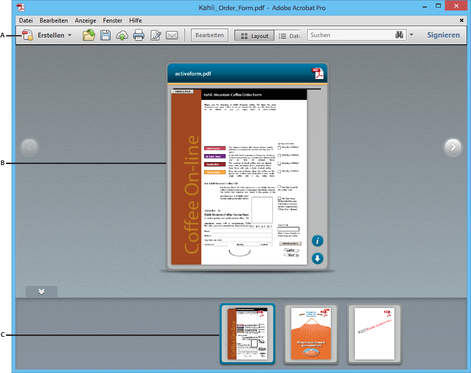 PDF-Portfoliofenster in Acrobat Pro