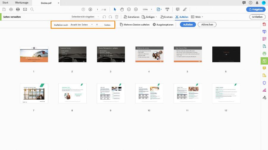 einzelne seiten aus pdf speichern
