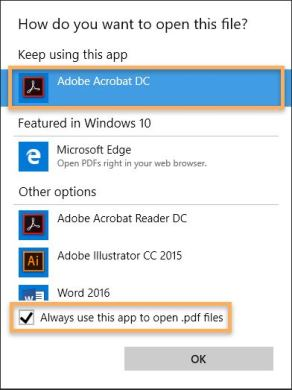 Pdf File From Adobe Flash Player