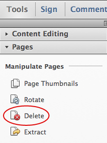Choose Tools, Pages, Delete