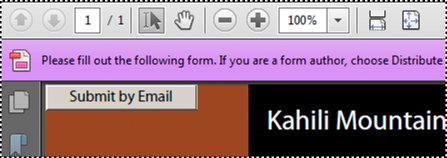 Document message bar for a form
