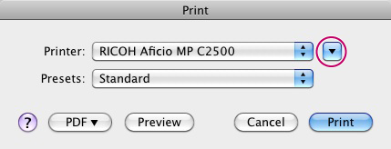Expanded mode Print Dialog box