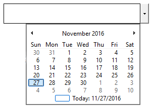 The Date Picker