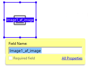 Using the Image field in a form