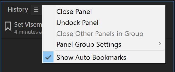 Show auto bookmarks option