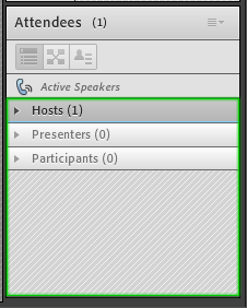 Part of the Attendees pod is highlighted by a colored border when navigating using keyboard
