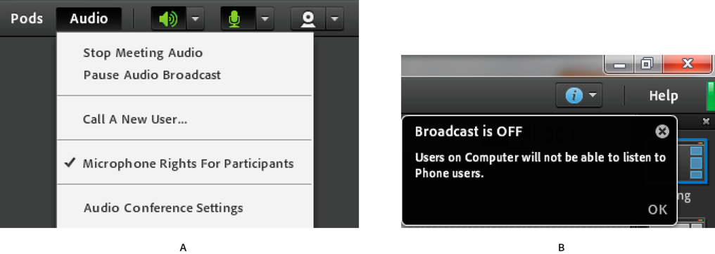 Hosts can pause broadcast of audio between computer microphone users and telephone users.