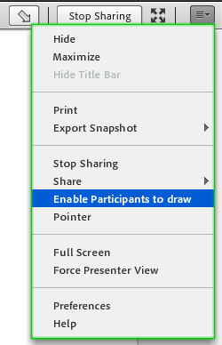 Enable drawing rights in a Share pod for all participants.