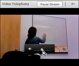 Volume control slider for in-meeting video