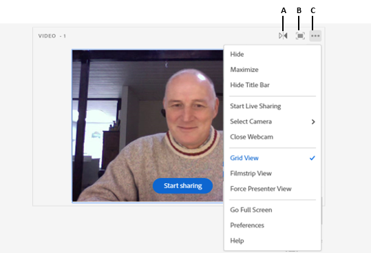 Webcam video in Video pod and the available controls