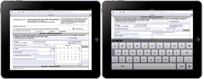 Mobile Forms on mobile devices including iPad