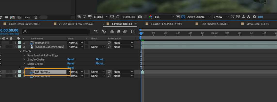 Reference Frame layer in the Timeline panel