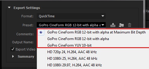 Media Encoder GoPro CineForm presets