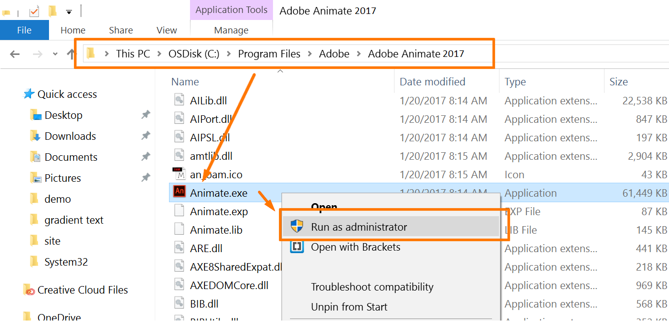 Troubleshooting tips to fix Animate crash on launch or startup