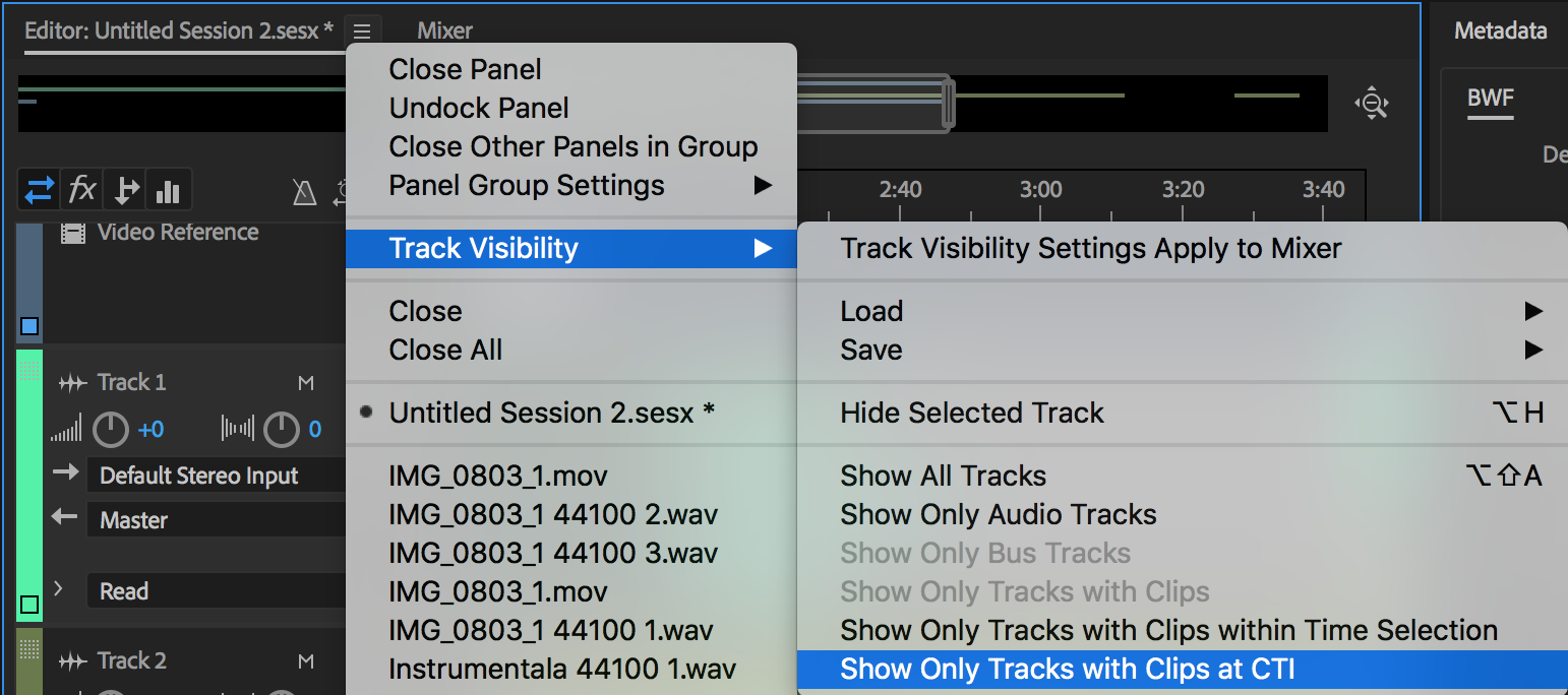 Track visibility options