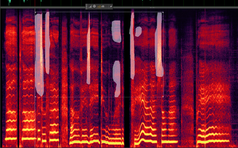 spectral-display-1