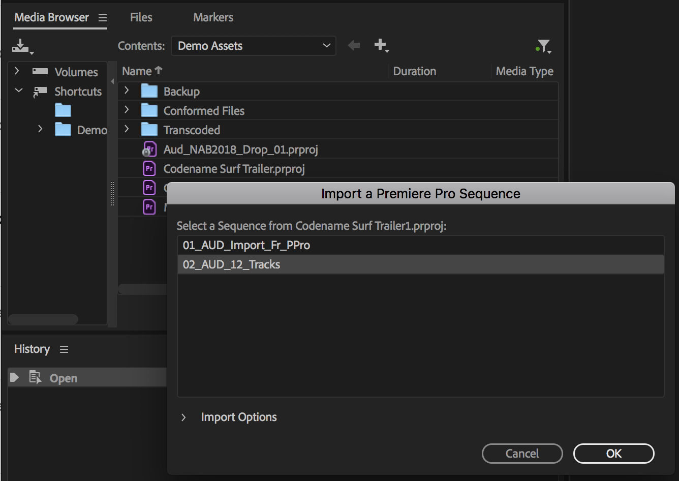 Premiere Pro sequence import