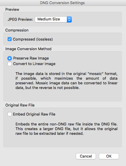 DNG Conversion Settings dialog in Adobe Bridge
