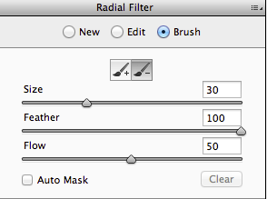 Brush controls for Graduated and Radial Filter masks