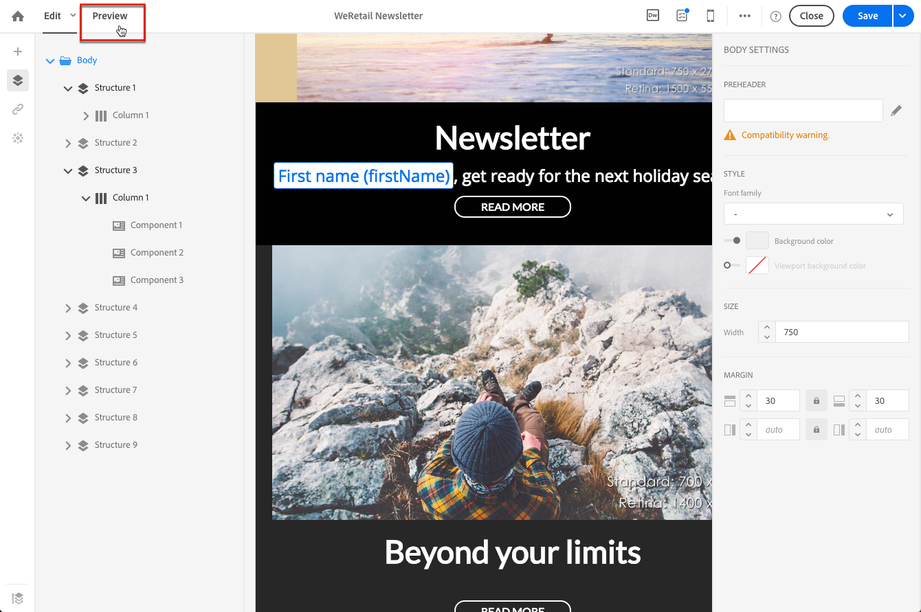 Email Designer Preview button