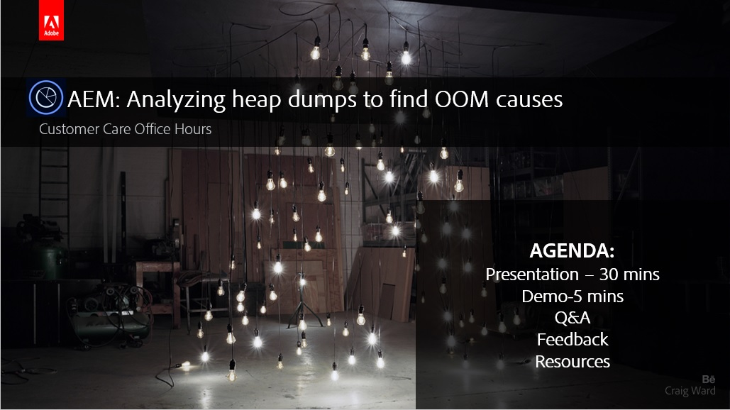 AEM: Analyzing heap dumps to find OOM causes