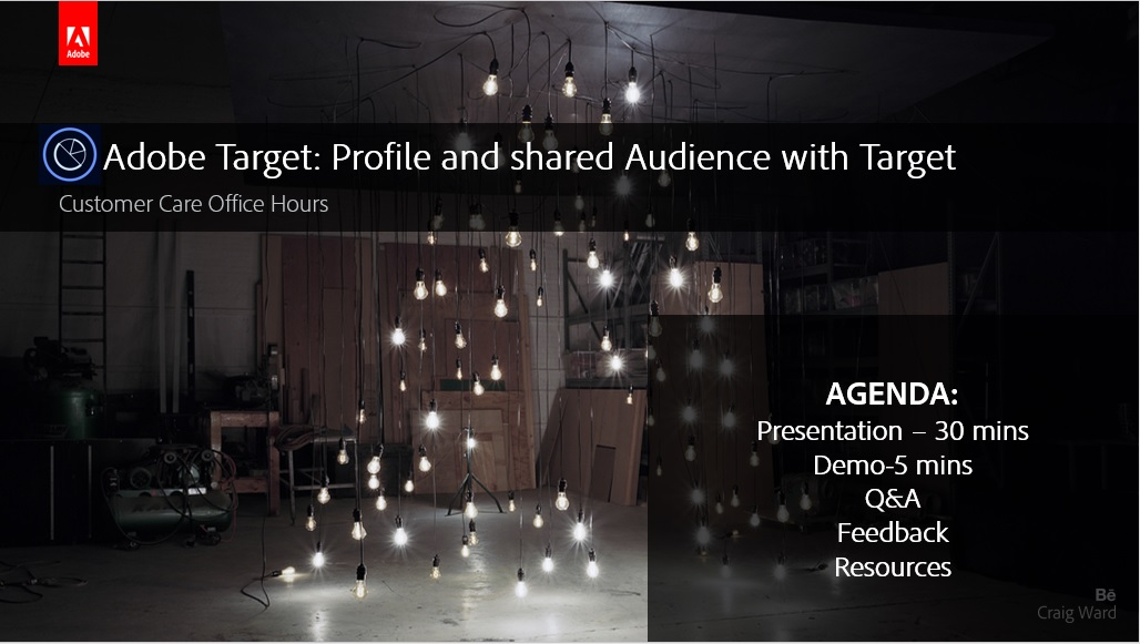 Adobe Target: Profile and shared Audience with Target