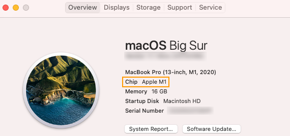 Find which chip your Mac uses