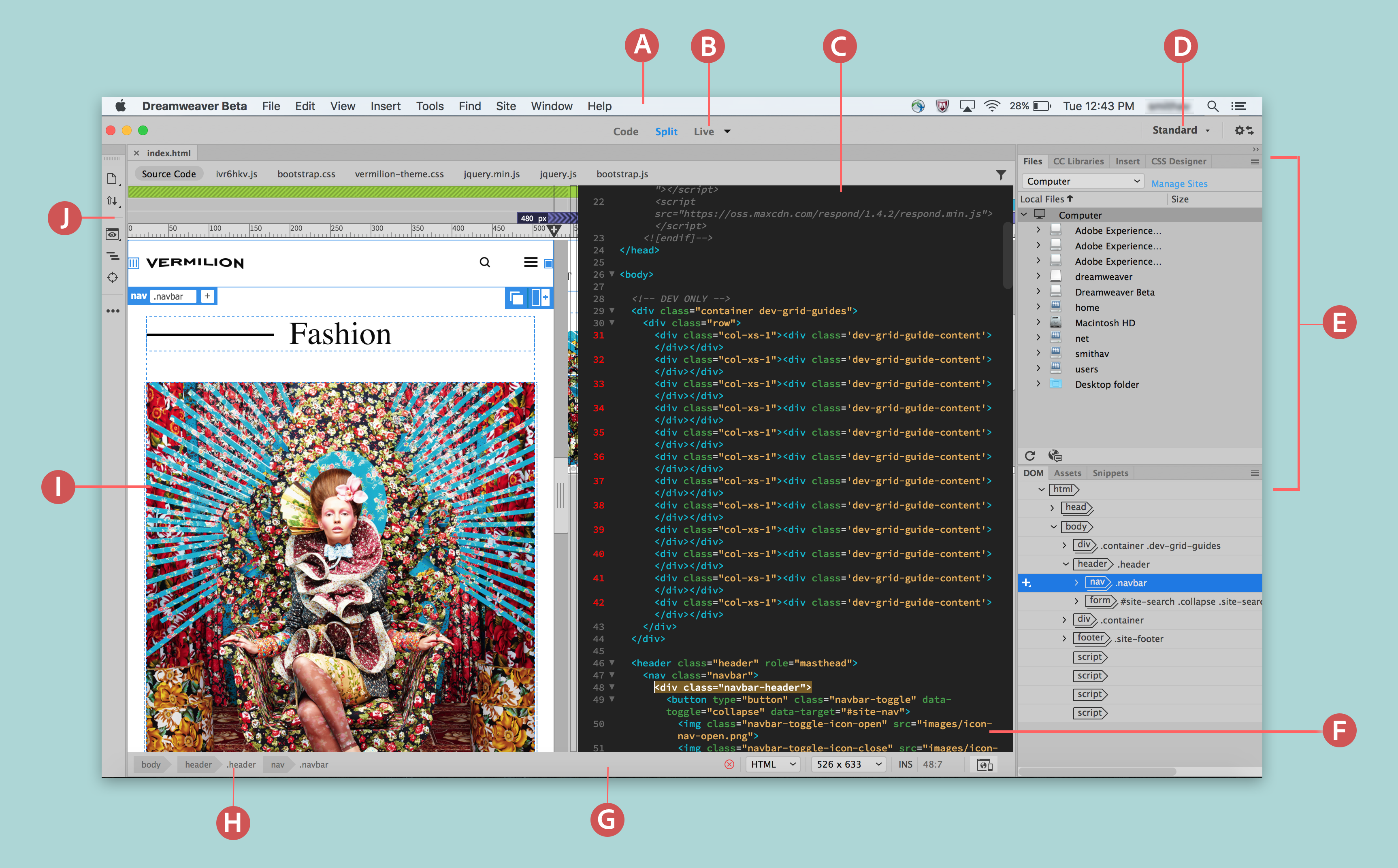 layout view versus standard view in dreamweaver.html