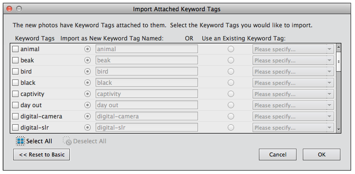 Advance-keyword-tags
