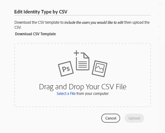 Edit Identity Type by CSV