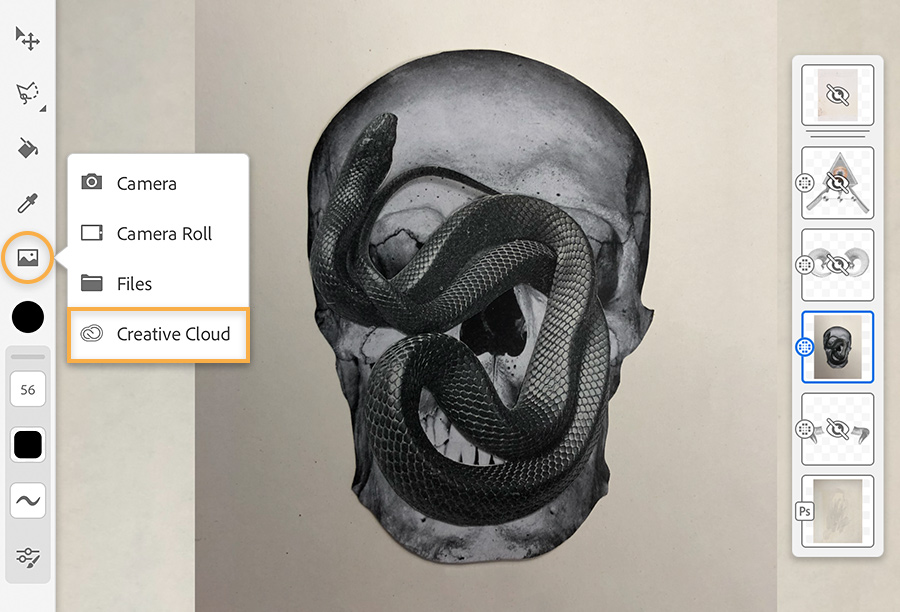 Black and white picture collage layer shows skull with a snake on the front, drawing tools on the left, layers on the right.