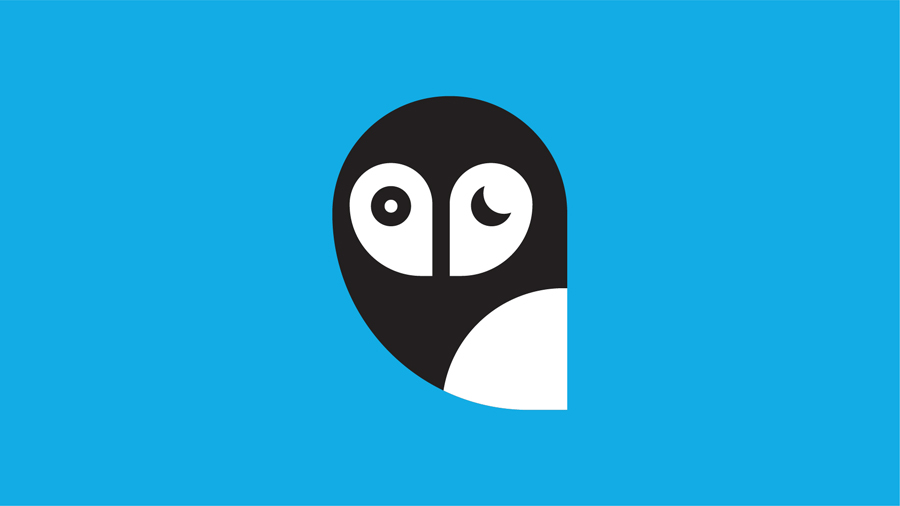 Simple and stylized vector image of an owl face on a bright blue background