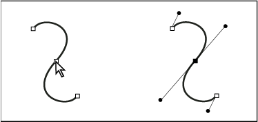 After selecting an anchor point (left), direction lines appear on any curved segments connected by the anchor point (right).