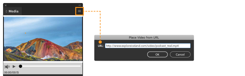 place video from URL