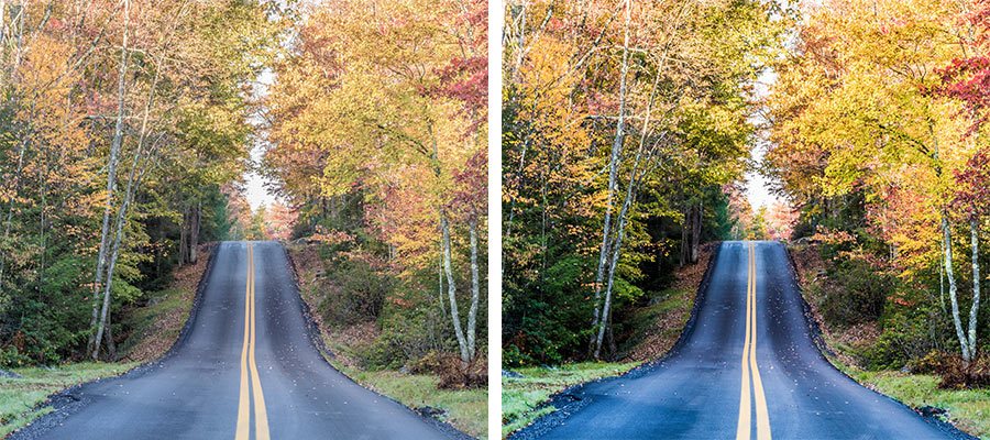 Side by side images of a road through colorful trees in Autumn, the right side photo has more intense colors