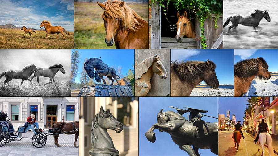 A multiple photo grid with images of horses and horse statues