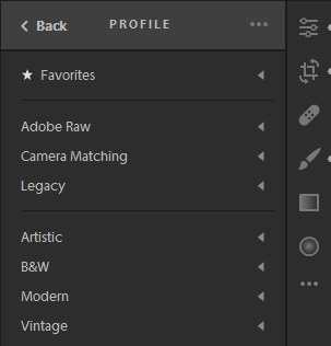 Profile groups for a raw photo.