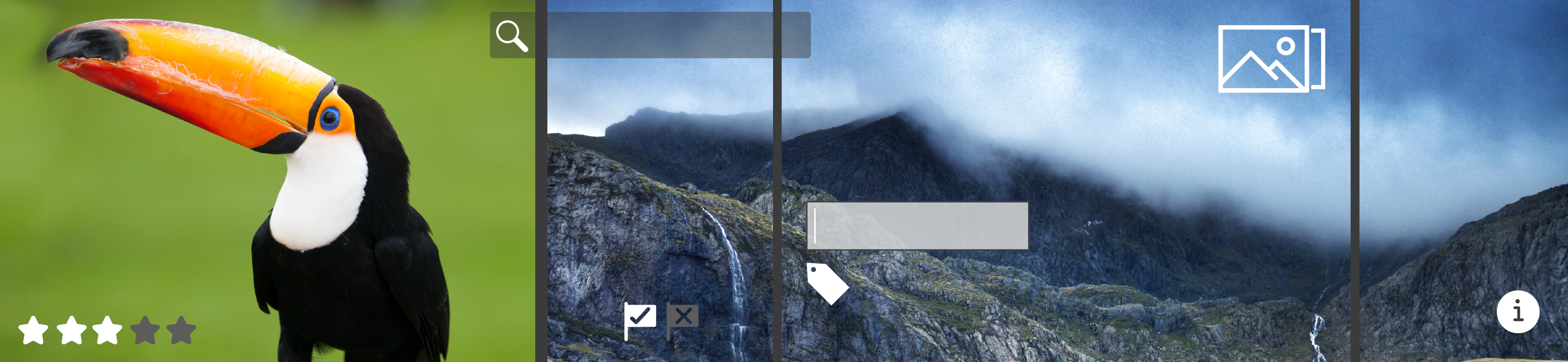 Work with albums. Flag, label, rate, stack, and search photos. Add keywords. View and edit metadata.