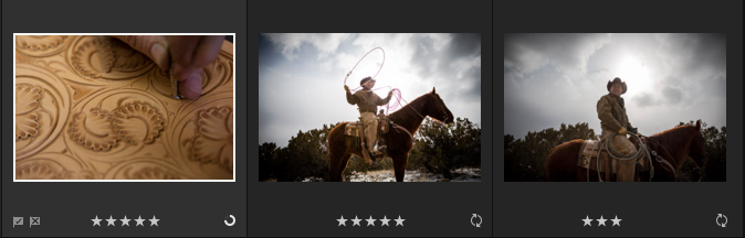 v2_ni-direct-assign-ratings-flags