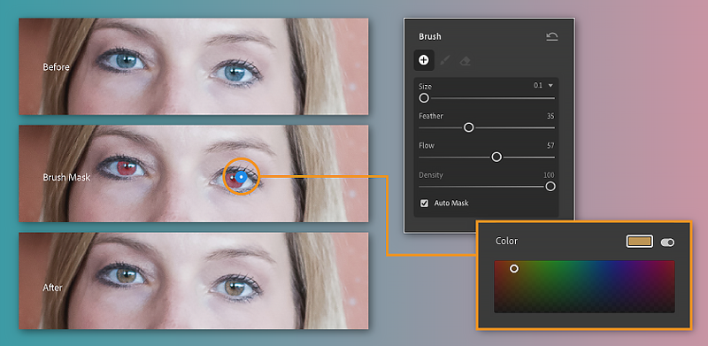 Apply colors to specific areas of your photo with the Brush tool