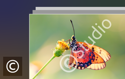 Add text watermarks in Lightroom desktop