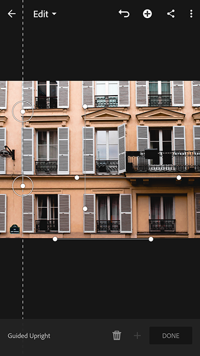 Two vertical and two horizontal guides drawn on the photo using Guided Upright