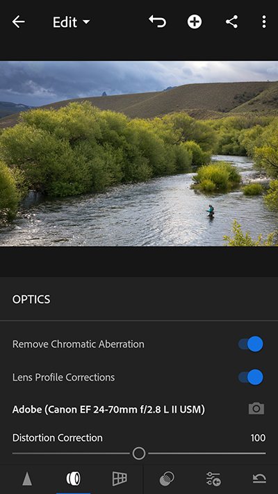 Lens profile controls