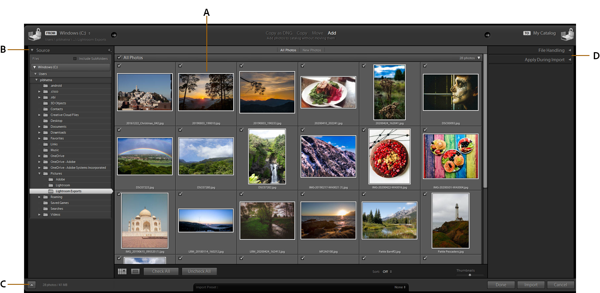 The Lightroom Classic import window
