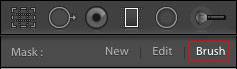 Brush controls in Lightroom Classic CC
