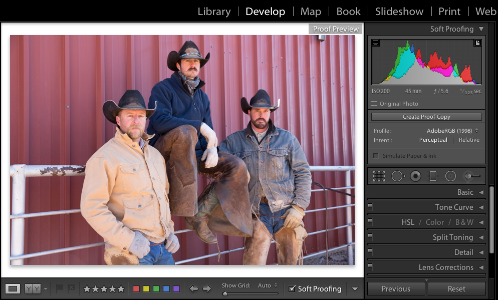 Lightroom Classic CC Soft-proofing in the Develop module