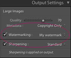 Lightroom Classic CC Output Settings panel