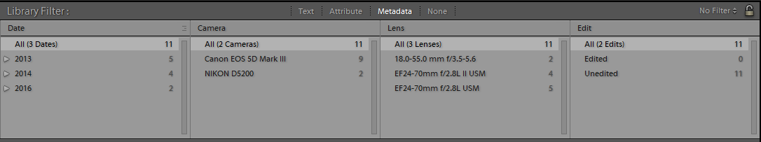 Metadata filters in the Library Filter bar