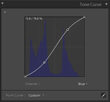 Editing the Point Curve in the Tone Curve panel